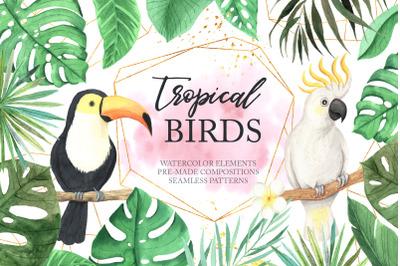 Watercolor Tropical Birds Set