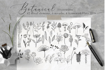 Floral Botanical Illustrations