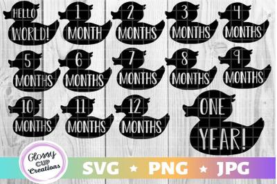 1-12 Monthly Milestone Ducklings - SVG PNG JPG - Stickers