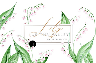 Watercolor lily of the valley wedding clip art. Meadow floral Clipart.