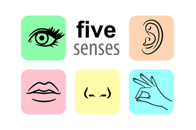 Senses icons. Five human illustrative senses vector illustration, tast