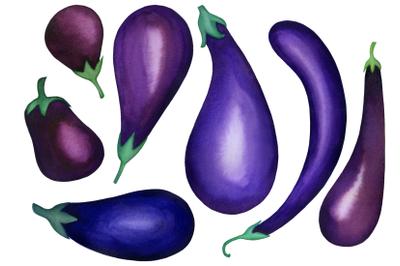 Watercolor eggplants