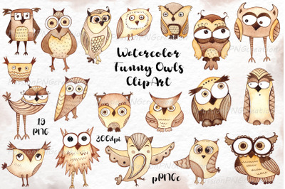Watercolor funny owls ClipArt,Watercolour Owl clip art, cute Owl