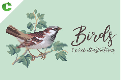 Birds - Pixel Illustrations