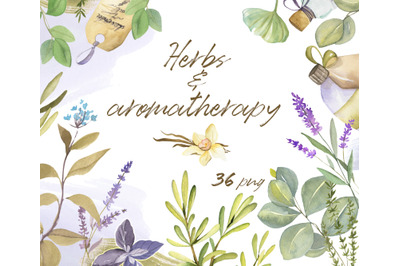 Watercolor set of Herbs and Aromatherapy elements. Hand drawn collecti