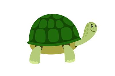 Green cute turtle cartoon icon