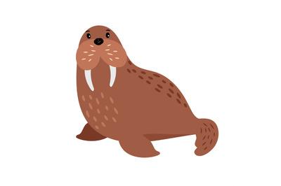 Walrus cartoon animal