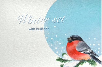 Bullfinch. Patterns and cards