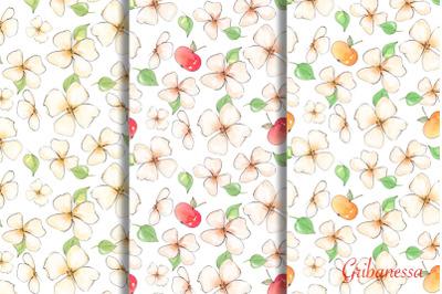 Apple garden. Patterns