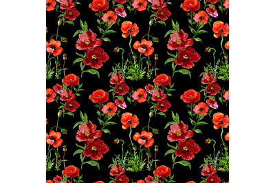 Seamless pattern of poppies.