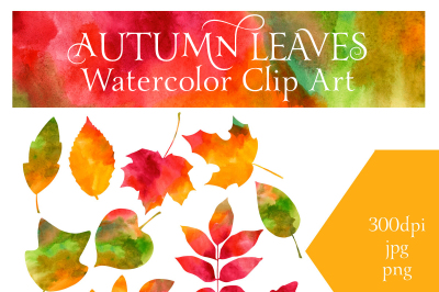 Autumn Leaves Watercolor
