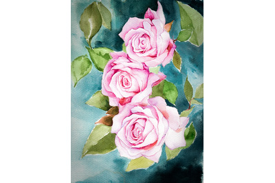 Hand-drawn watercolor pink roses on blue background