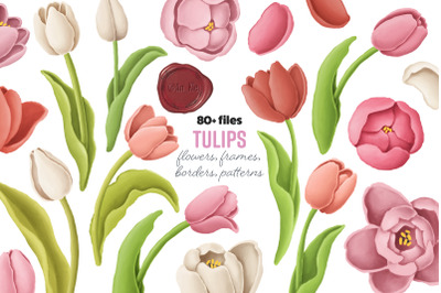 Tulips flowers, patterns, borders