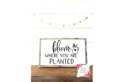 Bloom Where You Are Planted Spring Calligraphy SVG DXF EPS PNG Cut Fil