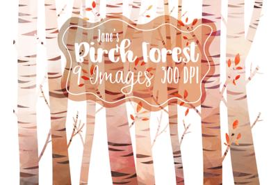 Watercolor Birch Tree Clipart