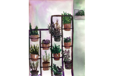 Watercolor home potted plants composition