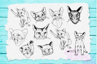 Cat Lineart SVG Bundle