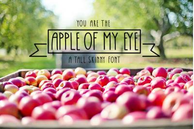 Apple Of My Eye Font
