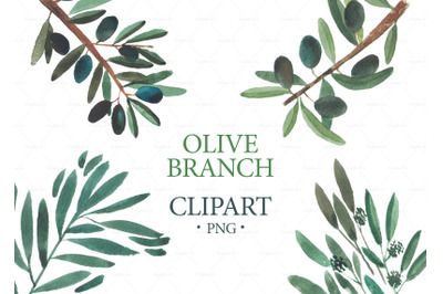 Watercolor Olive Branch Clipart, Wedding Clipart, Logo Branding, Eucal