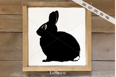 Bunny Cut File, Rabbit SVG, Easter Cutting File