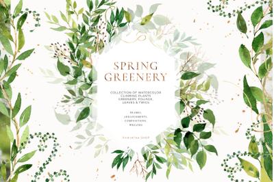Watercolor greenery, foliage, climbing plants, leaves
