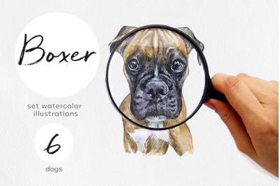 Boxer dog. Watercolor dogs illustrations. Cute 6 dogs.
