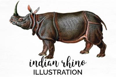 Rhino Rhinoceros Clipart