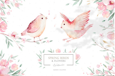 Watercolor spring birds & flowers