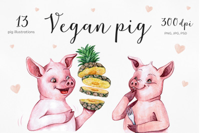 Watercolor cartoon pig illustrations. Funny 13 pigs.