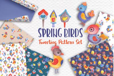 Watercolor Birds Spring Pattern Set