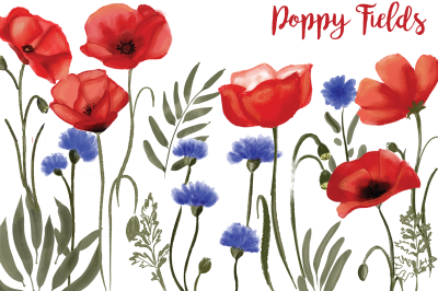Poppy fields : watercolor floral illustrations