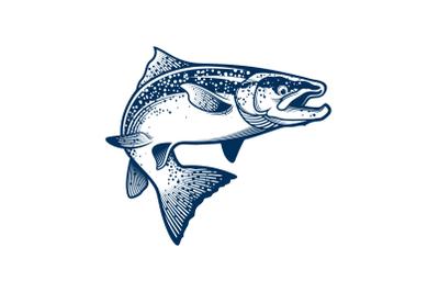 Fish - Giant Tuna Vector