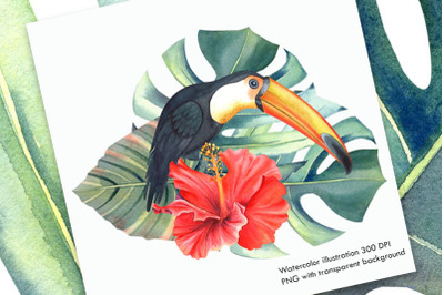 Watercolor Tropical Illustration I