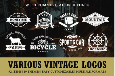 Various Vintage Logo Template Bundle