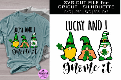 Lucky and i gnome it svg, st patricks day svg