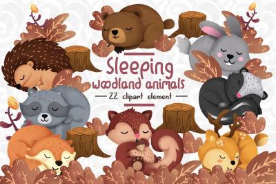 Sleeping Woodland animals