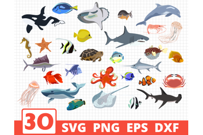 Ocean creatures svg bundle | Fish cricut | Ocean clipart