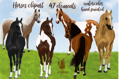 Watercolor Horse clipart,Horse breeds,Horse graphics png