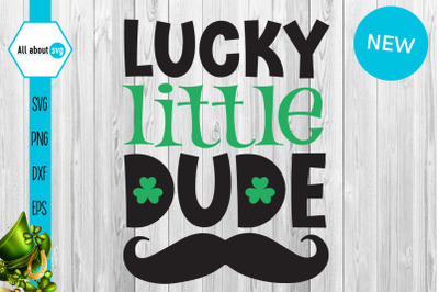 Lucky Little Dude Svg, St Patricks Svg