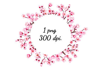 Watercolor frame with blooming cherry. Pink Sakura wreath. PNG file