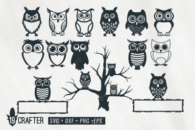 cute owl character svg bundle