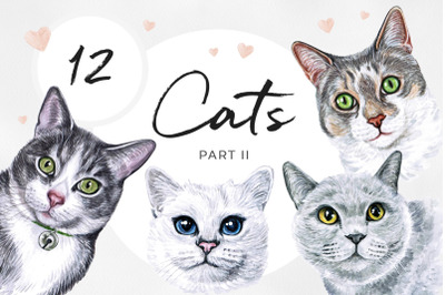 PART 2. Big watercolor set cat illustrations. Cute 12 cats.