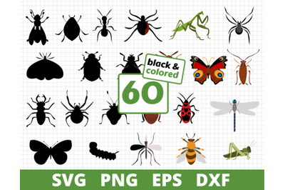 INSECTS COLORED & SILHOUTTE SVG BUNDLE | Butterflies svg | Animals