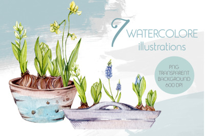 Watercolor Spring Illustrations