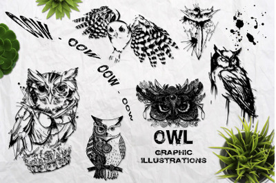 Wild owls. Collection of 22 graphic hand drawn illustrations