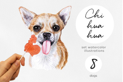 Chihuahua. Watercolor set dogs illustrations. 8 dogs