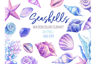 Watercolor Seashells Clipart Ocean Conch Shells Starfish Seaweed Nauti