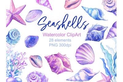 Watercolor Seashells Clipart Ocean Conch Shells Starfish Seaweed Nauti