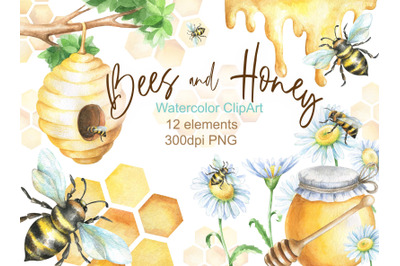 Watercolor bees and honey clipart png digital clip art Hand painted be