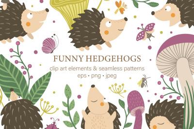 Funny Hedgehogs